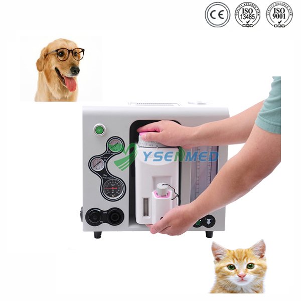 Portable veterinary anesthesia machine