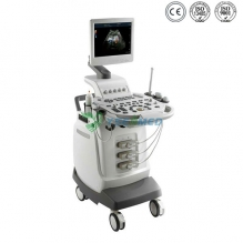 3D 4D Color Doppler Echocardiography