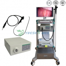 Veterinary Video Endoscope System YSNJ-1050VET